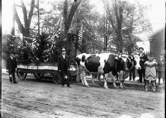 oxen-and-wagon-jpg