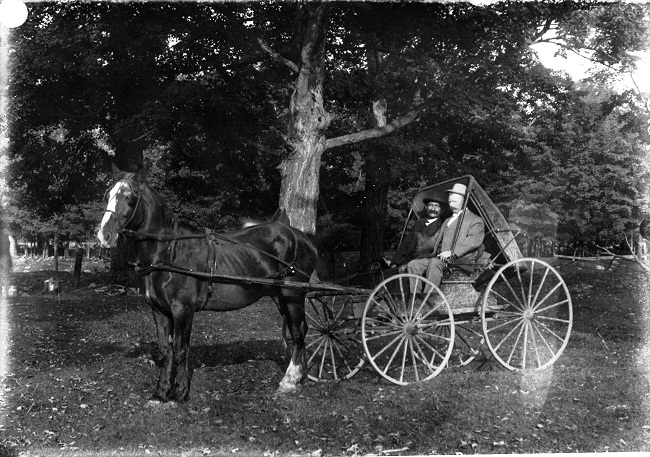 two-men-and-horse-and-buggy